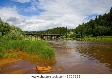Polluted forest river - stock photo