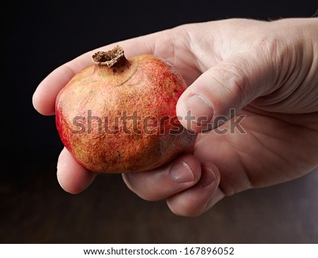 Pomegranate in a hand