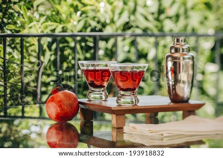 Pomegranate Martini served outdoors in natural environment - stock photo