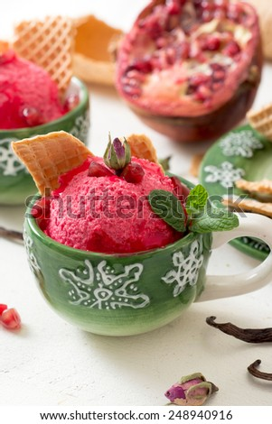Pomegranates homemade ice cream in coffee cup,selective focus - stock photo