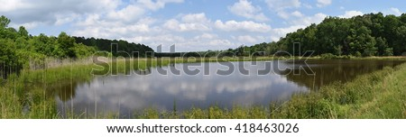 Pond among forest in spring in Mississippi - stock photo