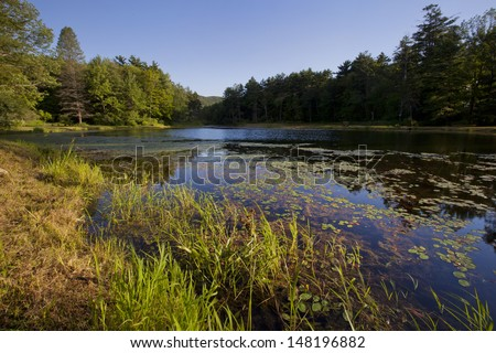Pond at Wild Acres Park in Pittsfield, Massachusetts - stock photo