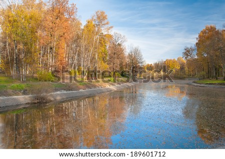 Pond in autumn, yellow leaves, reflection
