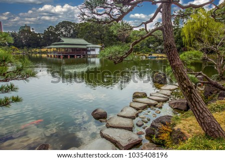 Pond in  TOKYO  with red  fish  KOI . house on  the  coast ,   small pine  trees  on the  coast  of  pond , beautiful stones  as  path  to  go.  in  Springtime ( time  of Sakura blossom)