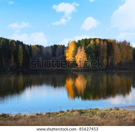 Pond with still surface and autumn forest