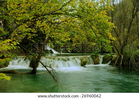 Ponds and small waterfalls in autumn lush vegetation in Plitvice (Croatia - Hrvatska)