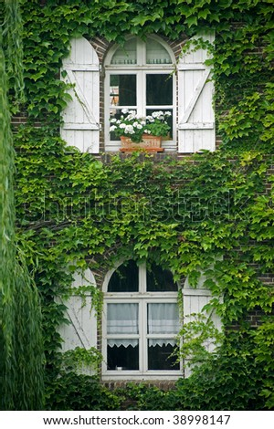 Pont-Tranchefetu (Eure-et-Loir, Centre, France) - Old house covered with creepers
