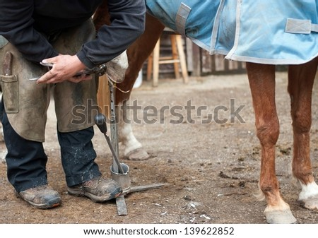 Pony having her feet trimmed by the farrier. - stock photo