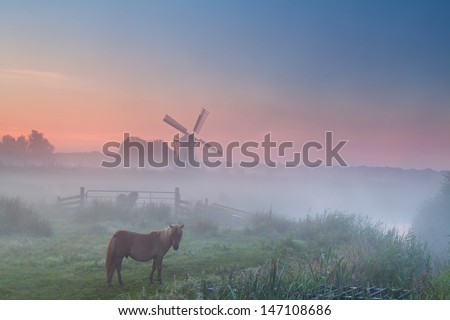 pony in fog on pasture and windmill, summer sunrise , Groningen, Netherlands - stock photo