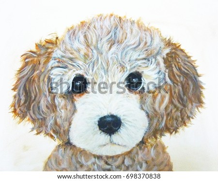 Poodle Dog Art Cute Puppy Wallpaper Lover Pet Background Brown White Watercolor Funny