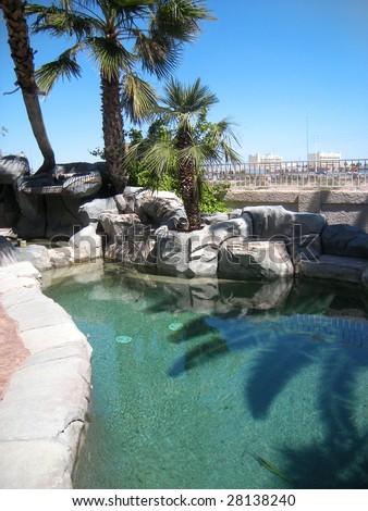pool in las vegas - stock photo
