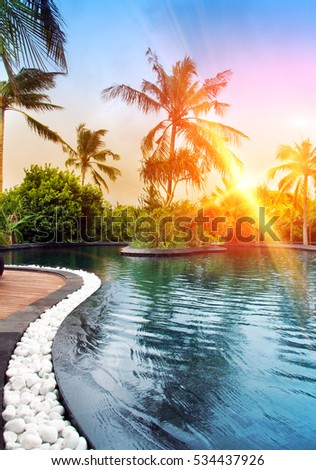 Pool in tropical garden.