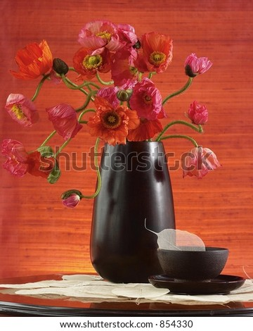 Poppies in bloom-Still life - stock photo