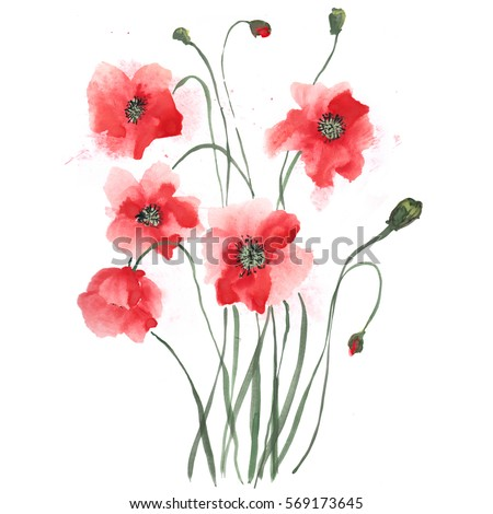 Poppies painted gouache stylized chinese painting stock illustration poppies painted gouache stylized chinese painting stock illustration 569173645 shutterstock mightylinksfo