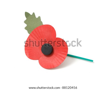 Poppy appeal - stock photo