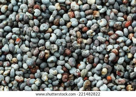 Poppy seeds, close-up - stock photo