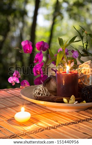 Popurr�­, bowl, candles , cinnamon, and orchid - in forest - stock photo