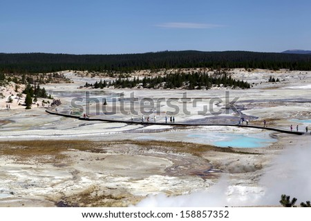 Porcelain Basin in Yellowstone