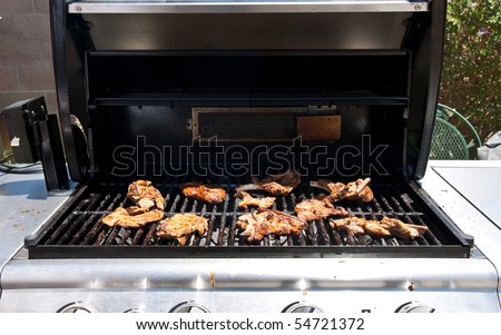 Pork Chops on Barbecue Grill - stock photo