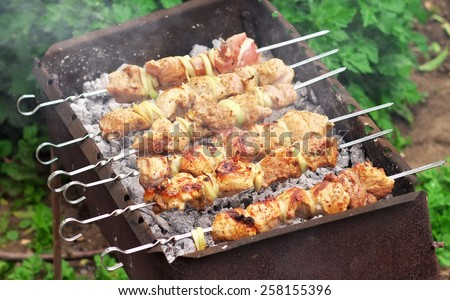 Pork Shish kebab on Fire. Appetizing fresh meat shish kebab prepared on a grill wood coal, outdoors. - stock photo