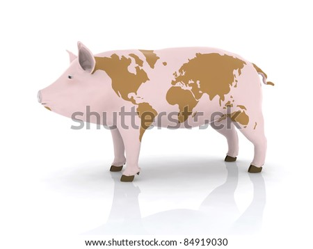 pork with world map on the skin