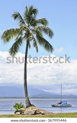 Port Douglas inlet with a single palm tree and yacht - stock photo