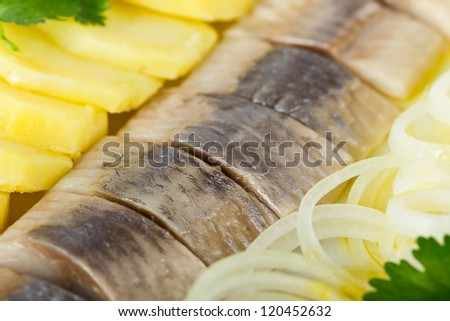 Portion of herring fish fillets with potato and onion background - stock photo