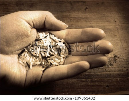portion rice holding in hand - stock photo