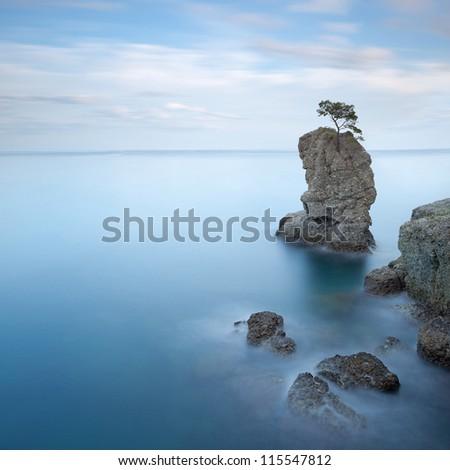 Portofino natural regional park. Lonely pine tree rock and coastal cliff beach. Long exposure photography. Liguria, Italy - stock photo