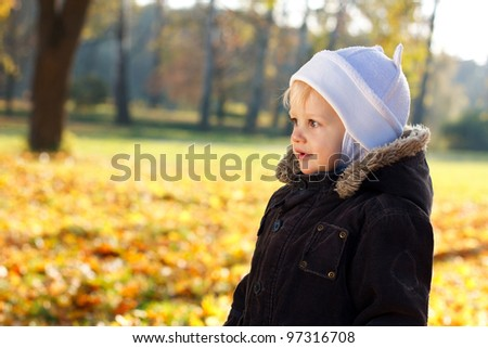 Portrait cute child against a background of sunny golden autumn nature. Blurred background - stock photo