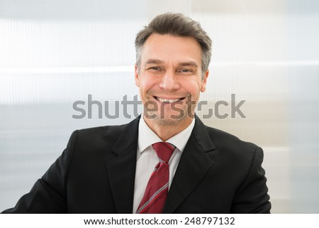 Portrait Of A Confident Smiling Mature Businessman - stock photo