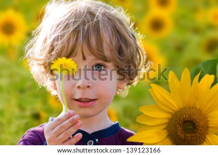 Portrait of a cute kid with blue eyes and fair curled hair on a sunflower field holding a single dandelion flower in the hand on a sunny summer day - stock photo