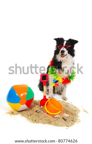 Portrait of a dog on vacation with garland and sunglasses - stock photo