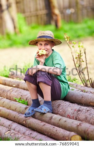 Portrait of a happy boy with a straw hat sitting on a pile of pine logs - stock photo