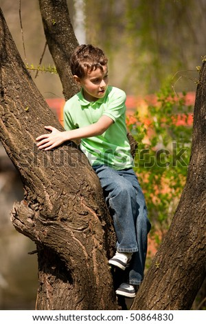 Portrait of a happy child climbing in a tree in a park
