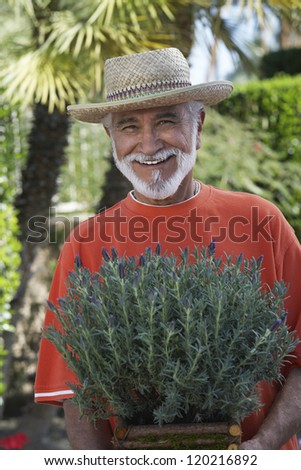 Portrait of a happy senior man holding potted plant at lawn - stock photo