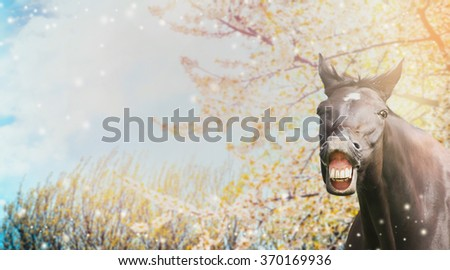 Portrait of a horse with a smile on background of spring blossom nature - stock photo