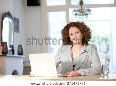 Portrait of a mid adult woman using computer at home - stock photo