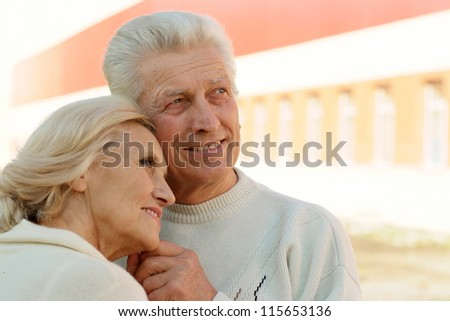 portrait of a nice senior couple standing