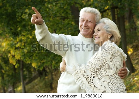 portrait of a nice senior couple standing in autumn park - stock photo