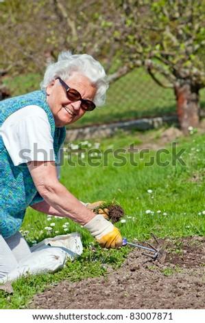 Portrait of a senior woman in a garden. - stock photo