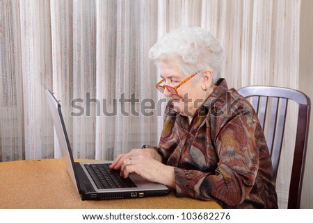 Portrait of a senior woman working at computer - stock photo