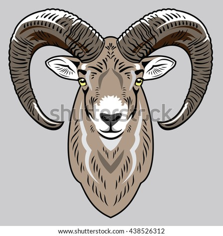 Portrait of a sheep - stock photo