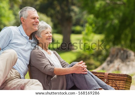 Portrait of a smiling senior couple sitting with picnic basket at the park - stock photo