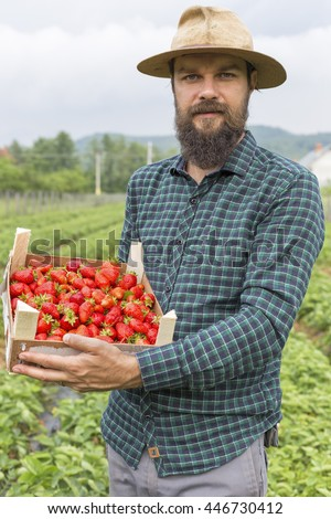 Portrait of a young farmer  holding a  box full with fresh red strawberries outside on the field