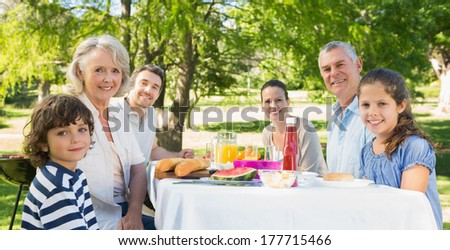 Portrait of an extended family having lunch in the lawn - stock photo