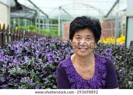 Portrait of Asian senior citizen smiling at lavender garden - stock photo
