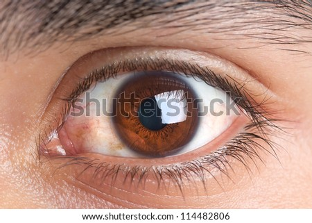 portrait of  brown eye of young man - stock photo