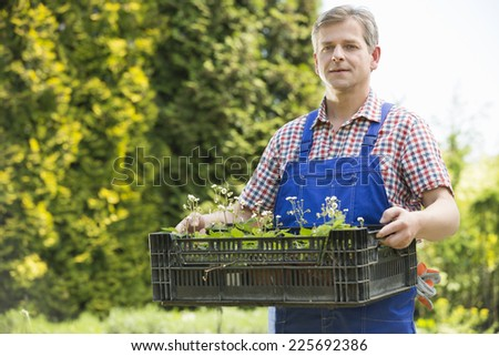 Portrait of confident gardener holding crate of potted plants - stock photo