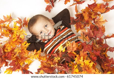 Portrait of cute boy with autumnnal leaves in a  studio - stock photo